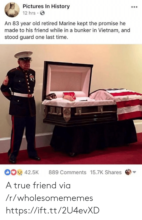 True, History, and Pictures: Pictures In History  12 hrs  An 83 year old retired Marine kept the promise he  made to his friend while in a bunker in Vietnam, and  stood guard one last time  42.5K 889 Comments 15.7K Shares A true friend via /r/wholesomememes https://ift.tt/2U4evXD