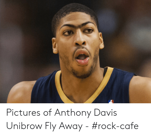Davis Unibrow: Pictures of Anthony Davis Unibrow Fly Away - #rock-cafe