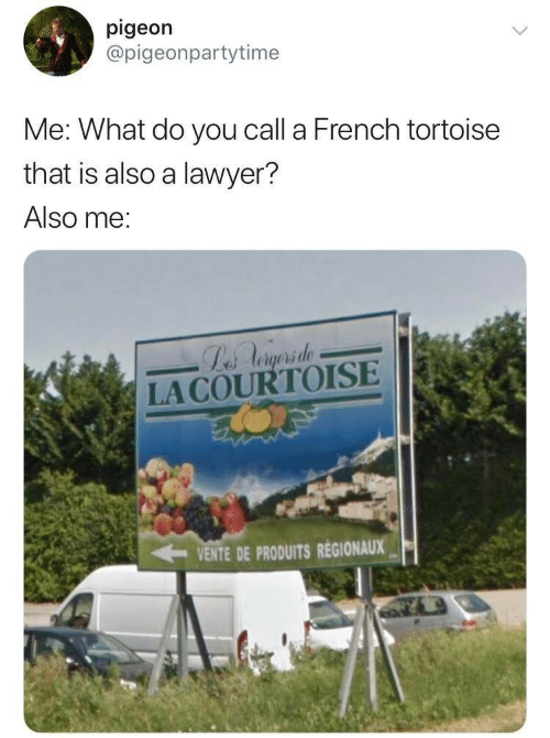 Lawyer, French, and Tortoise: pigeon  @pigeonpartytime  Me: What do you call a French tortoise  that is also a lawyer?  Also me:  Labs Aogsrsde  LACOURTOISE  VENTE DE PRODUITS REGIONAUX