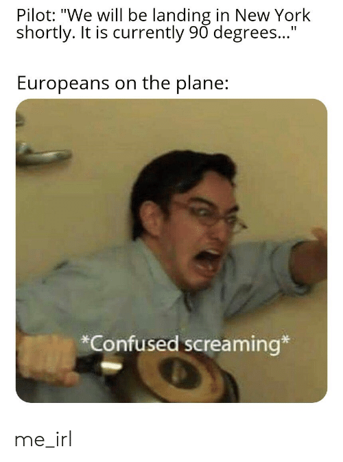 """Confused, New York, and Irl: Pilot: """"We will be landing in New York  shortly. It is currently 90 degrees...""""  Europeans on the plane:  Confused screaming* me_irl"""