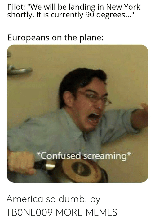 """pilot: Pilot: """"We will be landing in New York  shortly. It is currently 90 degrees...""""  Europeans on the plane:  *Confused screaming* America so dumb! by TB0NE009 MORE MEMES"""