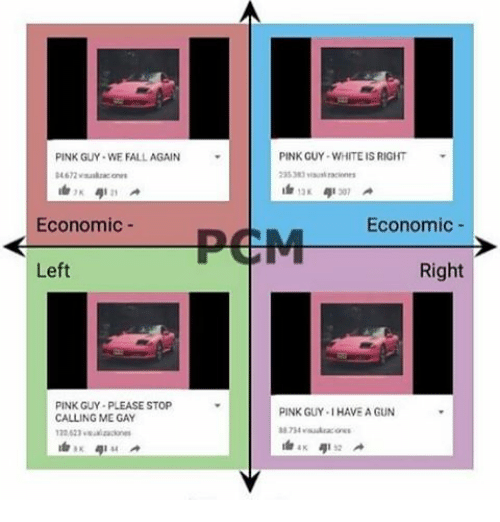 Pink Guy: PINK GUY WHITEIS RIGHT  PINK GUY WE FALL AGAIN  307  PCM Economic  Economic  Right  Left  PINK GUY-PLEASE STOP  PINK GUY.IHAVE A GUN  CALLING ME GAY