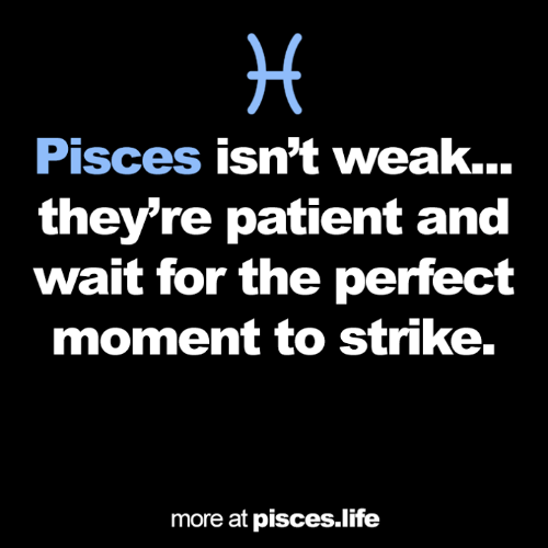 Life, Patient, and Pisces: Pisces isn't weak...  they're patient and  wait for the perfect  moment to strike.  more at pisces.life