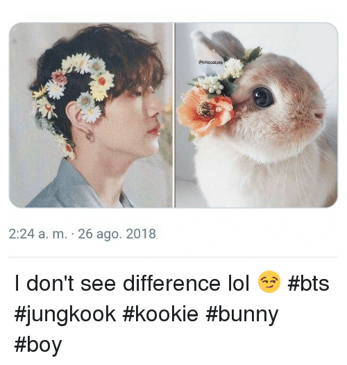 Lol, Bts, and Boy: @pitapoteto  2:24 a. m. 26 ago. 2018 I don't see difference lol 😏 #bts #jungkook #kookie #bunny #boy