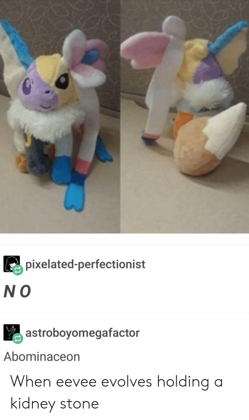 Pixelated: pixelated-perfectionist  N O  astroboyomegafactor  Abominaceon When eevee evolves holding a kidney stone