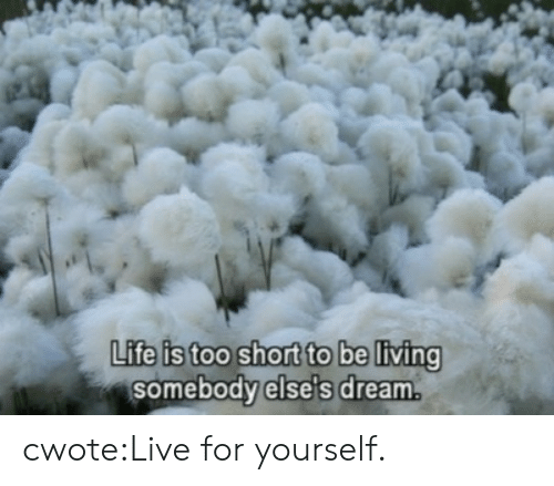 Life Is Too Short To: PK  Life is too short to be living  somebody else's dream. cwote:Live for yourself.