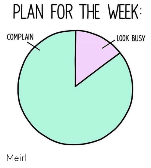 complain: PLAN FOR THE WEEK:  COMPLAIN  LOOK BUSY Meirl