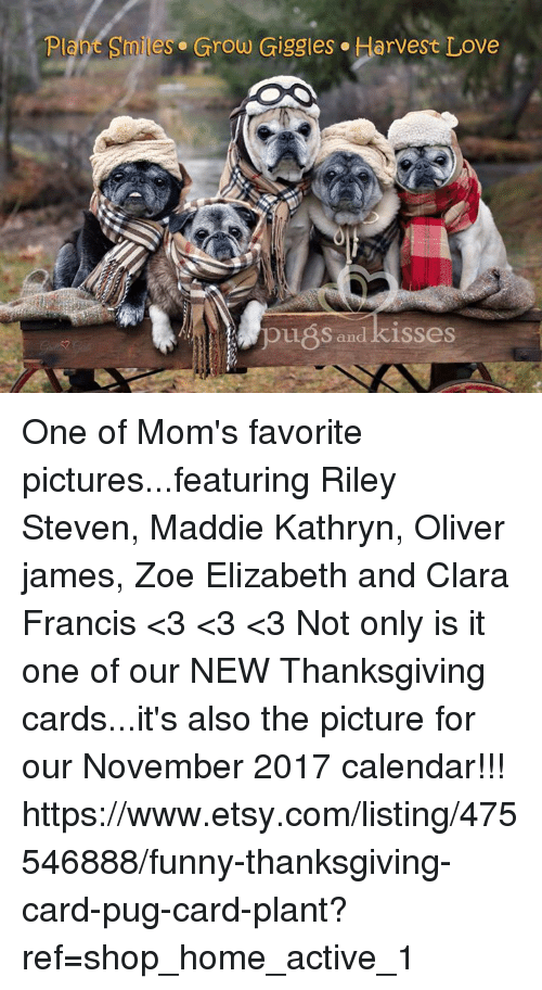 funny thanksgiving: Plant Smiles. Grow Giggles. Harvest Love  pu8s and kisses One of Mom's favorite pictures...featuring Riley Steven, Maddie Kathryn, Oliver james, Zoe Elizabeth and Clara Francis <3 <3 <3 Not only is it one of our NEW Thanksgiving cards...it's also the picture for our November 2017 calendar!!!  https://www.etsy.com/listing/475546888/funny-thanksgiving-card-pug-card-plant?ref=shop_home_active_1