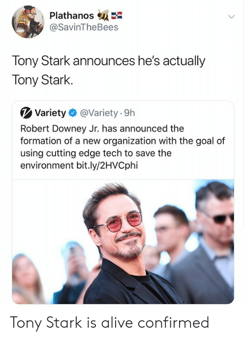 tony stark: PlathanosE  @SavinTheBees  Tony Stark announces he's actually  Tony Stark  Variety  @Variety 9h  Robert Downey Jr. has announced the  formation of a new organization with the goal of  using cutting edge tech to save the  environment bit.ly/2HVCphi Tony Stark is alive confirmed