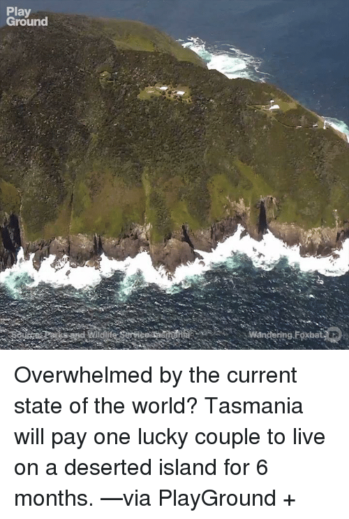 Overwhelm: Play  Ground  wand ing Foxbat Overwhelmed by the current state of the world?   Tasmania will pay one lucky couple to live on a deserted island for 6 months. —via PlayGround +