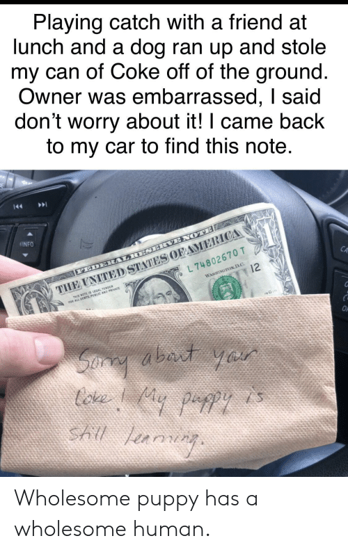 D C: Playing catch with a friend at  lunch and a dog ran up and stole  my can of Coke off of the ground  Owner was embarrassed, I said  don't worry about it! I came back  to my car to find this note  INFO  CA  L 74802670 T  WASHINGTON,D.C.  THIS NOTE IS LEGAL TENDER Wholesome puppy has a wholesome human.