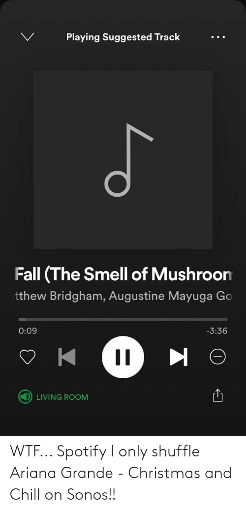 ariana grande: Playing Suggested Track  Fall (The Smell of Mushroom  tthew Bridgham, Augustine Mayuga Go  0:09  -3:36  LIVING ROOM WTF... Spotify I only shuffle Ariana Grande - Christmas and Chill on Sonos!!
