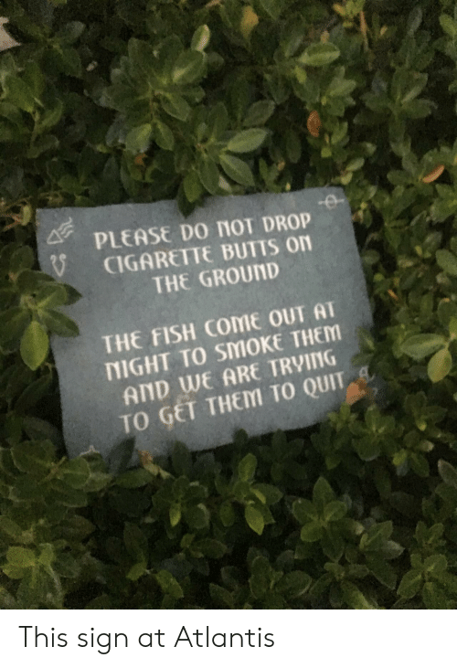 nol: PLEASE Do nol DROP  CIGARETTE BUTTS on  THE GROUND  THE FISH COME OUT AT  NIGHT TO SMOKE THEM  AND WE ARE TRVING  TO GET THEM TO QUIT This sign at Atlantis