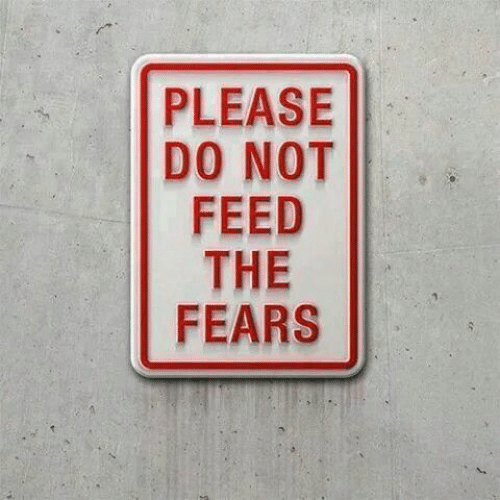 Please, Not, and The: PLEASE  DO NOT  FEED  THE  FEARS