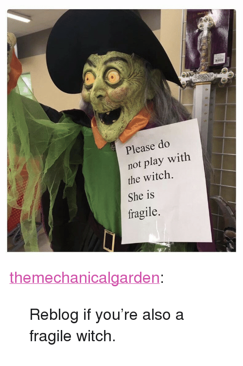 """do not play: Please do  not play with  the witch.  She is  fragile.  2  1 <p><a href=""""http://themechanicalgarden.tumblr.com/post/165626510199/reblog-if-youre-also-a-fragile-witch"""" class=""""tumblr_blog"""">themechanicalgarden</a>:</p><blockquote><p>Reblog if you're also a fragile witch.</p></blockquote>"""
