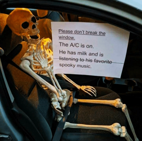 Spooky: Please don't break the  window.  The A/C is on.  He has milk and is  listening to his favorite  spooky music.