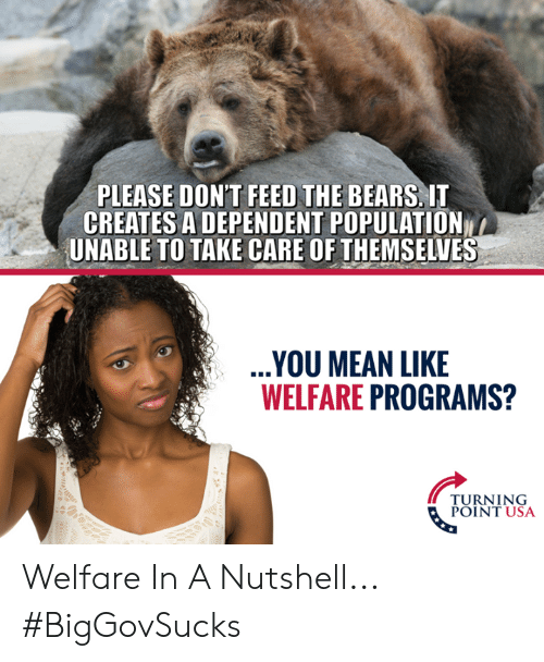 Turning Point Usa: PLEASE DON'T FEED THE BEARS, IT  CREATES A DEPENDENT POPULATION  UNABLE TO TAKE CARE OF THEMSELVES  YOU MEAN LIKE  WELFARE PROGRAMS?  TURNING  POINT USA Welfare In A Nutshell... #BigGovSucks