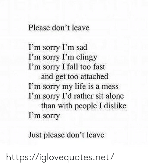 life is a mess: Please don't leave  I'm sorry I'm sad  I'm sorry I'm clingy  I'm sorry I fall too fast  and get too attached  I'm sorry my life is a mess  I'm sorry I'd rather sit alone  than with people I dislike  I'm sorry  Just please don't leave https://iglovequotes.net/