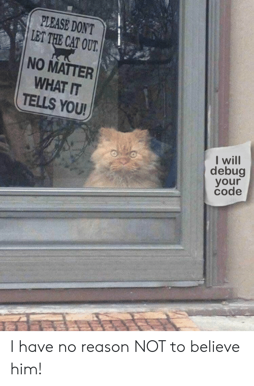Reason, Cat, and Code: PLEASE DON'T  LET THE CAT OUT.  NO MATTER  WHAT IT  TELLS YOU!  I will  debug  your  code I have no reason NOT to believe him!