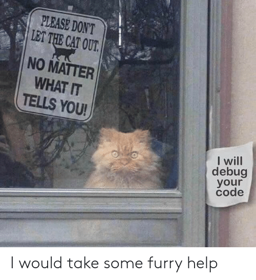 Help, Cat, and Furry: PLEASE DON'T  LET THE CAT OUT  NO MATTER  WHAT IT  TELLS YOU!  will  debug  your  code I would take some furry help