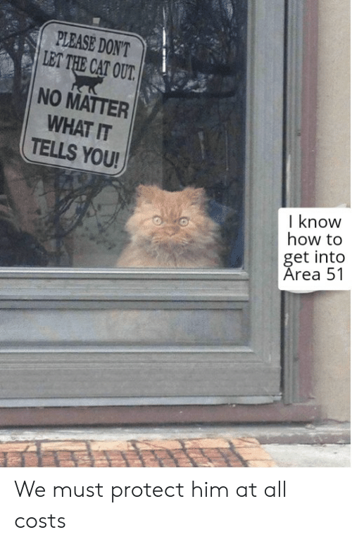 Reddit, How To, and How: PLEASE DON'T  LET THE CAT OUT.  NO MATTER  WHAT IT  TELLS YOU!  I know  how to  get into  Area 51 We must protect him at all costs