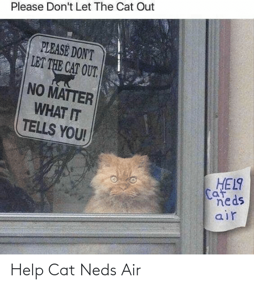Tells: Please Don't Let The Cat Out  PLEASE DON'T  LET THE CAT OUT.  NO MATTER  WHAT IT  TELLS YOU!  HEL9  Caf  neds  air Help Cat Neds Air