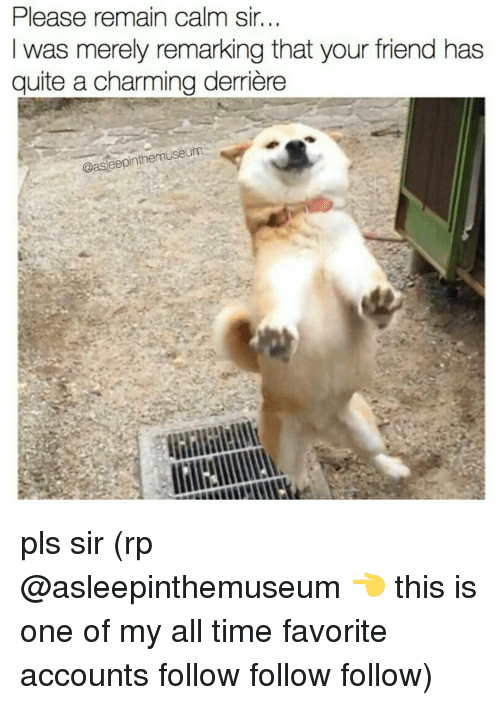 follow-follow-follow: Please remain calm sir.  I was merely remarking that your friend has  quite a charming derriere  @aseepinthemuseum pls sir (rp @asleepinthemuseum 👈 this is one of my all time favorite accounts follow follow follow)