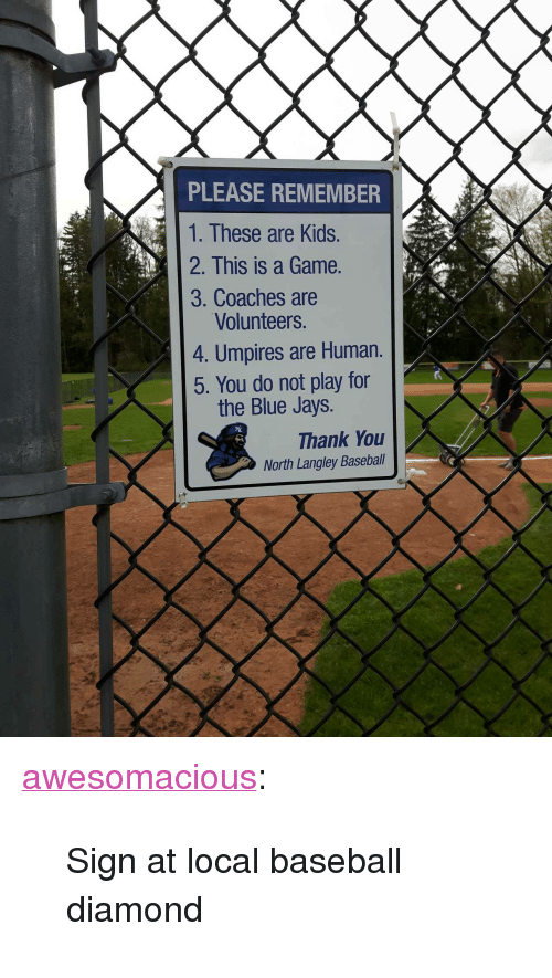 """do not play: PLEASE REMEMBER  1. These are Kids.  2. This is a Game.  3. Coaches are  Volunteers.  4. Umpires are Human.  5. You do not play for  the Blue Jays.  Thank You  North Langley Baseball <p><a href=""""http://awesomacious.tumblr.com/post/173418607565/sign-at-local-baseball-diamond"""" class=""""tumblr_blog"""">awesomacious</a>:</p>  <blockquote><p>Sign at local baseball diamond</p></blockquote>"""