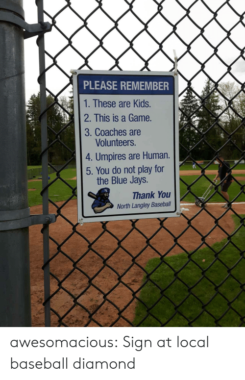 do not play: PLEASE REMEMBER  1. These are Kids.  2. This is a Game.  3. Coaches are  Volunteers.  4. Umpires are Human.  5. You do not play for  the Blue Jays.  Thank You  North Langley Baseball awesomacious:  Sign at local baseball diamond