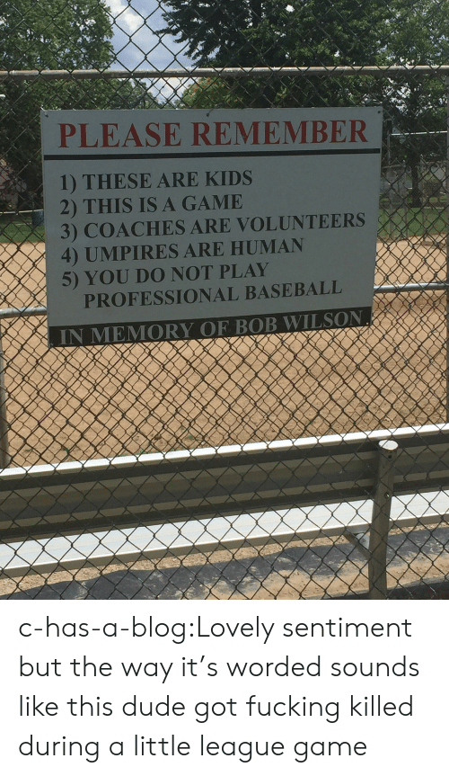 do not play: PLEASE REMEMBER  1) THESE ARE KIDS  2) THIS IS A GAMIE  3) COACHES ARE VOLUNTEERS  4) UMPIRES ARE HUMAN  5) YOU DO NOT PLAY  PROFESSIONAL BASEBALL c-has-a-blog:Lovely sentiment but the way it's worded sounds like this dude got fucking killed during a little league game