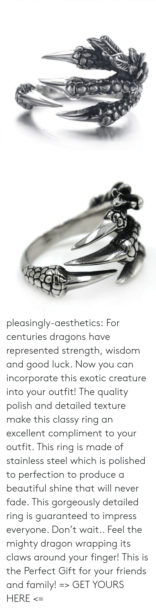 Centuries: pleasingly-aesthetics: For centuries dragons have represented strength, wisdom and good luck. Now you can incorporate this exotic creature into your outfit! The quality polish and detailed texture make this classy ring an excellent compliment to your outfit. This ring is made of stainless steel which is polished to perfection to produce a beautiful shine that will never fade.  This gorgeously detailed ring is guaranteed to impress everyone. Don't wait.. Feel the mighty dragon wrapping its claws around your finger! This is the Perfect Gift for your friends and family! => GET YOURS HERE <=