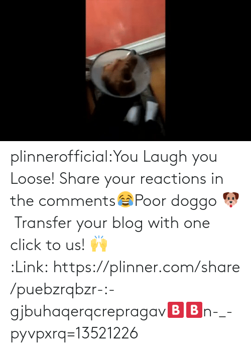 share: plinnerofficial:You Laugh you Loose! Share your reactions in the comments😂Poor doggo 🐶 Transfer your blog with one click to us! 🙌 :Link: https://plinner.com/share/puebzrqbzr-:-gjbuhaqerqcrepragav🅱🅱n-_-pyvpxrq=13521226