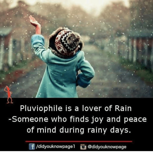 peace of mind: Pluviophile is a lover of Rain  -Someone who finds joy and peace  of mind during rainy days.  f/didyouknowpage1 @didyouknowpage