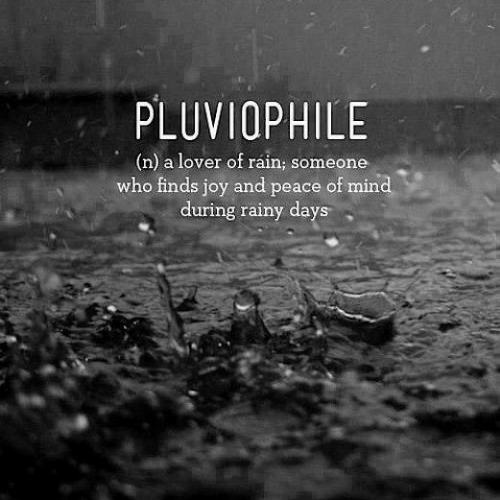 peace of mind: PLUVIOPHILE  (n) a lover of ráin; someone  who finds joy and peace of mind  during rainy days