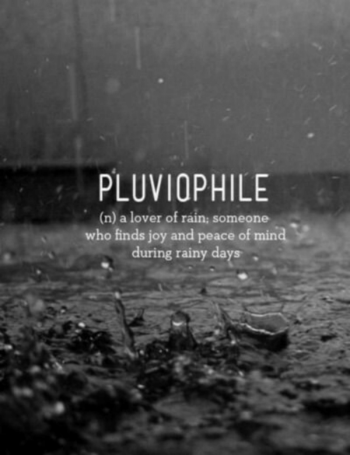 peace of mind: PLUVIOPHILE  (n) a lover of rain; someone  who finds joy and peace of mind  during rainy days