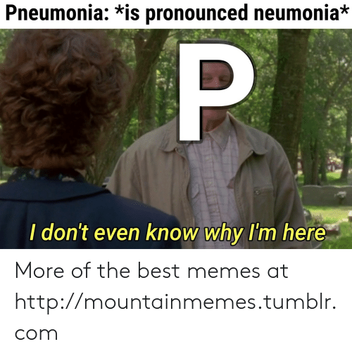 I Dont Even Know: Pneumonia: *is pronounced neumonia*  P  I don't even know why I'm here More of the best memes at http://mountainmemes.tumblr.com