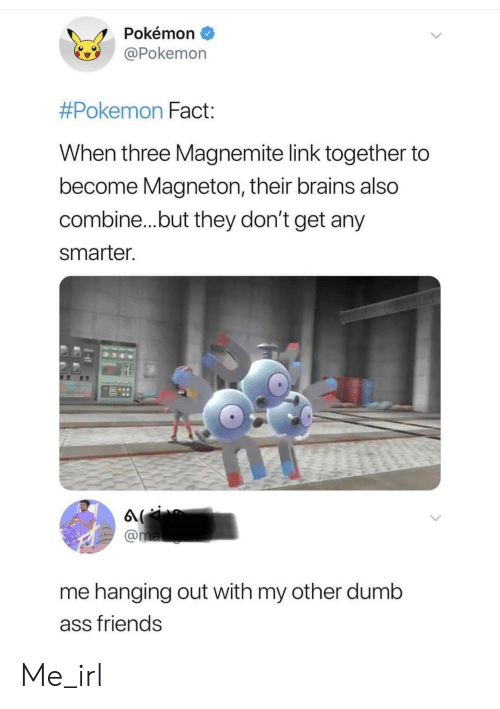 Dumb Ass: Pokémon  Pokemon  #Pokemon Fact  When three Magnemite link together to  become Magneton, their brains also  combine...but they don't get any  smarter  me hanging out with my other dumb  ass friends Me_irl
