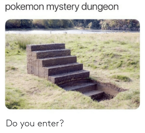 pokemon mystery dungeon: pokemon mystery dungeon   Do you enter?