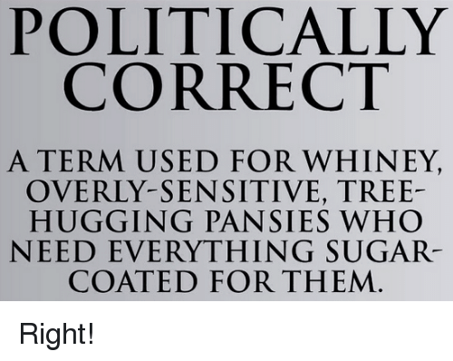 Overly Sensitive: POLITICALLY  CORRECT  A TERM USED FOR WHINEY,  OVERLY-SENSITIVE, TREE-  HUGGING PANSIES WHO  NEED EVERYTHING SUGAR  COATED FOR THEM Right!