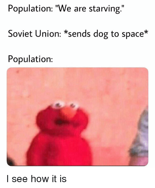 """I See How It Is: Population: """"We are starving.""""  Soviet Union: *sends dog to space*  Population: I see how it is"""
