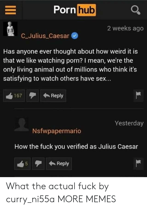 Has Anyone: Porn hub  2 weeks ago  C_Julius Caesar  Has anyone ever thought about how weird it is  that we like watching porn? I mean, we're the  only living animal out of millions who think it's  satisfying to watch others have sex...  Reply  167  Yesterday  Nsfwpapermario  How the fuck you verified as Julius Caesar  Reply  5  LO What the actual fuck by curry_ni55a MORE MEMES