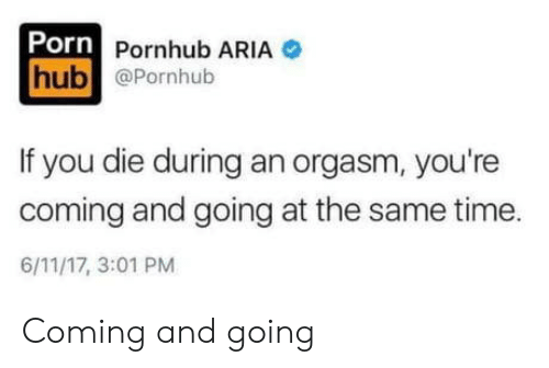 Pornhub Aria: Porn Pornhub ARIA  hub @Pornhub  If you die during an orgasm, you're  coming and going at the same time  6/11/17, 3:01 PM Coming and going