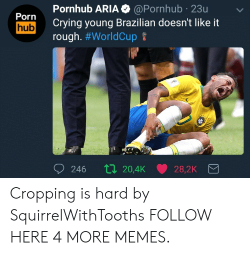Crying, Dank, and Memes: Pornhub ARIA  O@Pornhub 23u  Porn  hub Crying young Brazilian doesn't like it  rough. Cropping is hard by SquirrelWithTooths FOLLOW HERE 4 MORE MEMES.