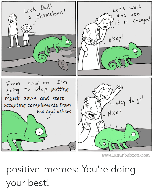 youre: positive-memes:  You're doing your best!