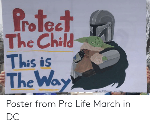 Pro Life: Poster from Pro Life March in DC