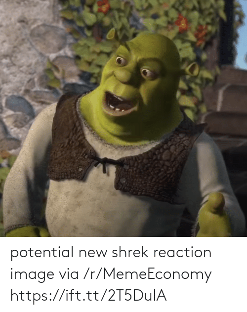 Shrek: potential new shrek reaction image via /r/MemeEconomy https://ift.tt/2T5DuIA