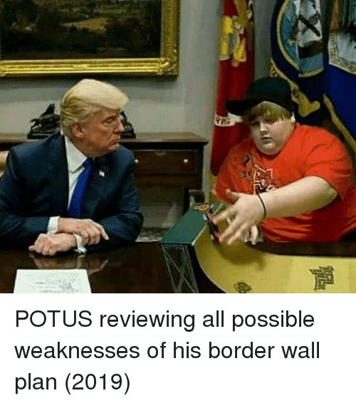 potus: POTUS reviewing all possible weaknesses of his border wall plan (2019)