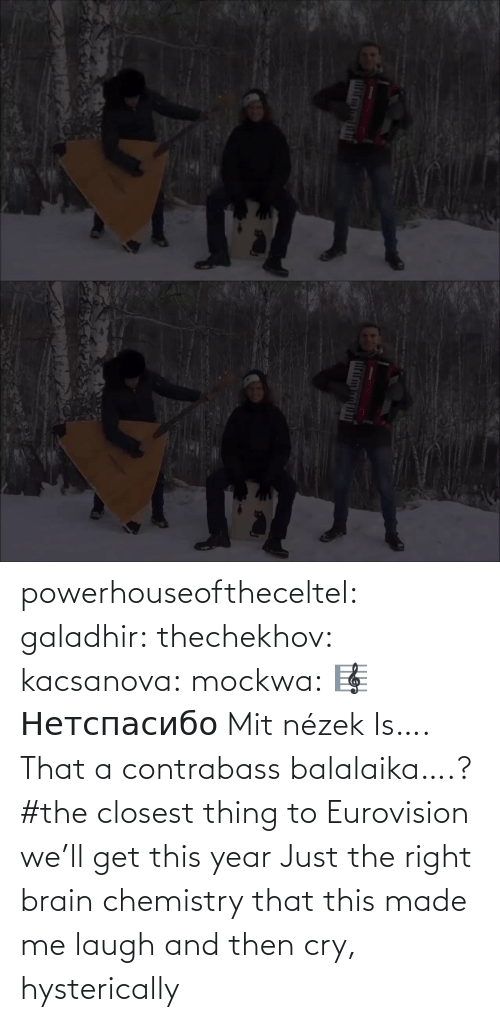 cry: powerhouseoftheceltel: galadhir:  thechekhov:  kacsanova:  mockwa:    🎼  Нетспасибо  Mit nézek    Is…. That a contrabass balalaika….?    #the closest thing to Eurovision we'll get this year    Just the right brain chemistry that this made me laugh and then cry, hysterically