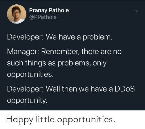 problems: Pranay Pathole  @PPathole  Developer: We have a problem.  Manager: Remember, there are no  such things as problems, only  opportunities.  Developer: Well then we have a DD0S  opportunity. Happy little opportunities.