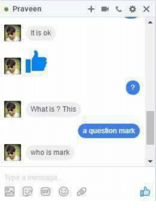 Question Marks: Praveen  It is ok  What is This  a question mark  who is mark  Type a message